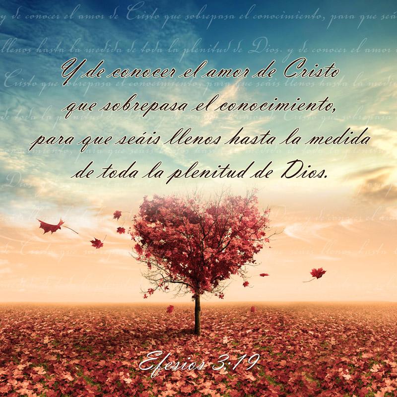 Efesios 3:19