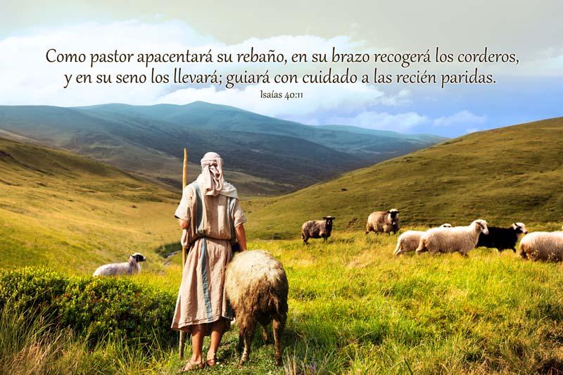 Isaías 40:11