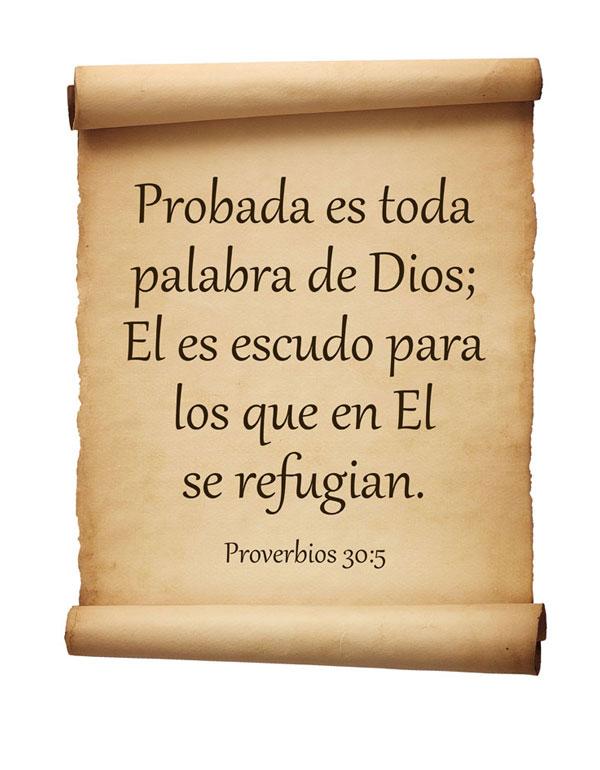 Proverbios 30:5