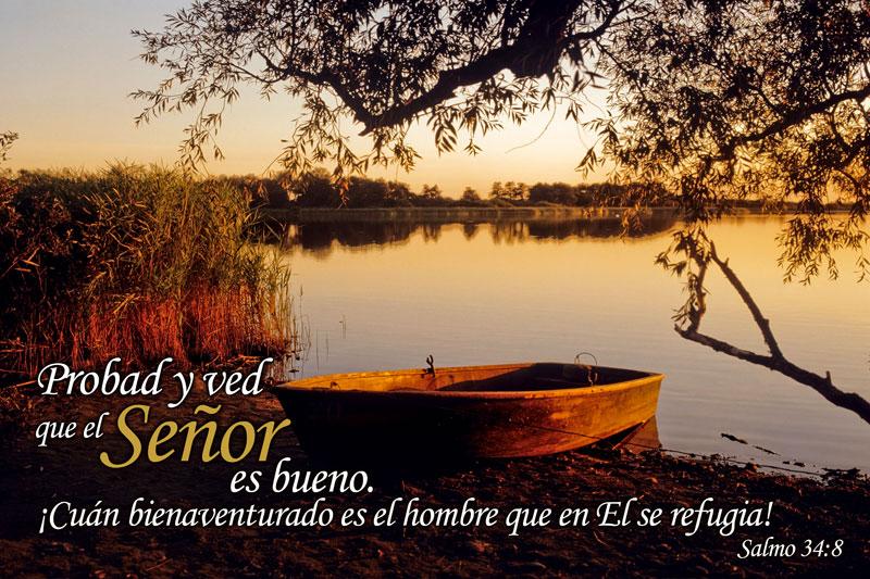 Salmo 34:8