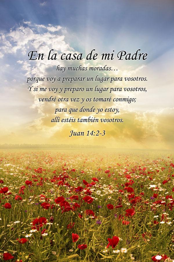 Juan 14:2-3
