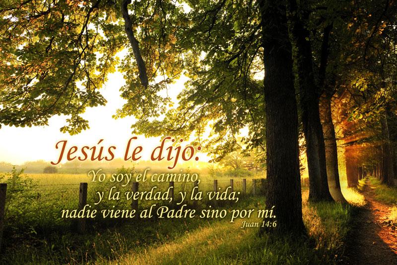Juan 14:6