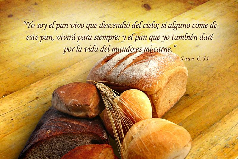 Juan 6:51