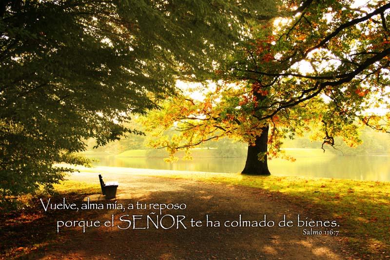 Salmo 116:7