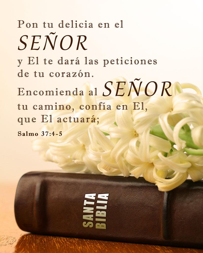 Salmo 37:4-5