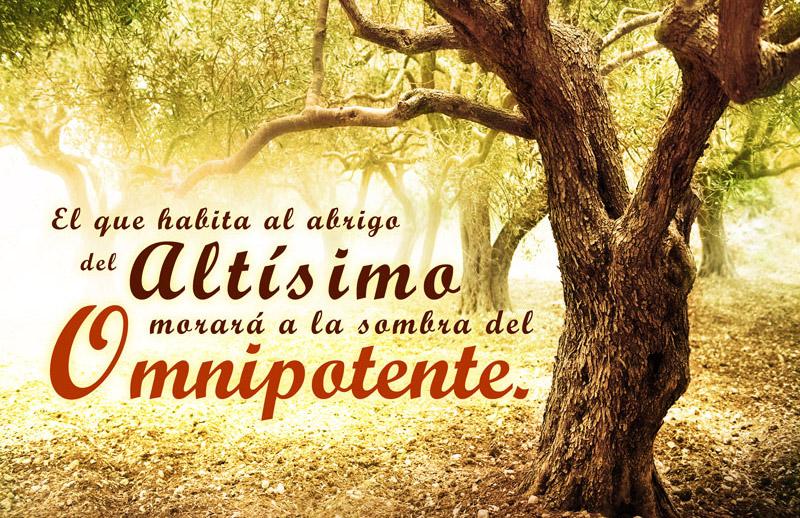 Salmo 91:1