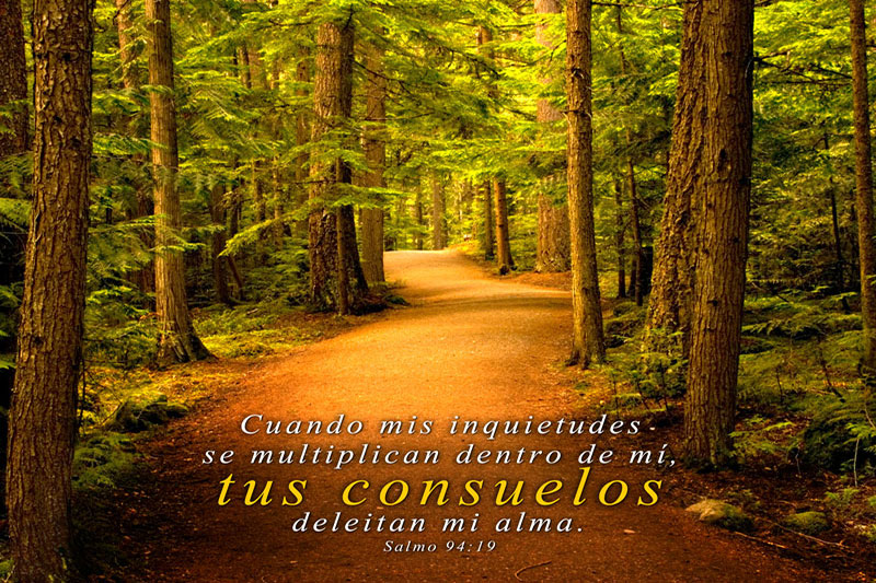 Salmo 94:19